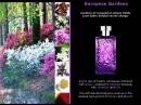 European Gardens Nicolas Danila pour femme Images