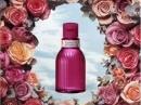 Rosarium Shiseido de dama Imagini