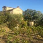 Le Jardin de la Bastide: Back to the Roots