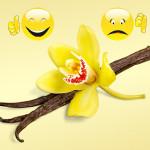Best in Show: Vanilla - For Vanilla Lovers   Vanilla Haters
