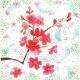 Sakura – The Day When Cherries Bloom