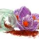 Perfumed Horoscope: August 12 - 18