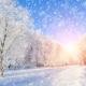Perfumed Horoscope: December 9-15