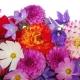 Perfumed Horoscope: March 17 - 23