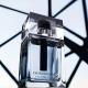 Dior Homme Eau for Men: Iris and Common Taste