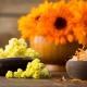 Perfumed Horoscope November 3 - November 10