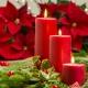 Perfumed Horoscope December 15 - December 21