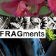 A Virtual Visit to FRAGments 2015: Part One
