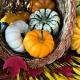 Perfumed Horoscope: October 12 - October 19