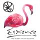 ESXENCE 2017: BEST Perfumes!
