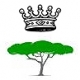 Oud - mirisno drvo iz rajskog vrta