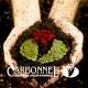 Carbonnel S.A. - Razgovor sa parfimerima (Kako nastaje parfemska bajka)