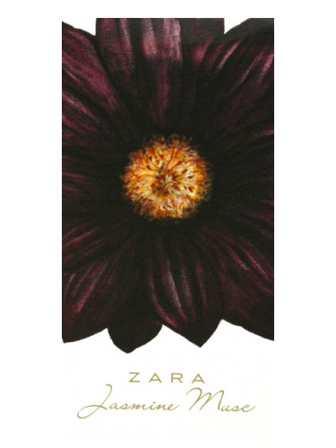 Jasmine Musc Zara Perfume A Fragrance For Women 2012