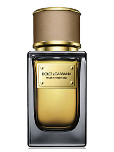 Velvet Tender Oud Dolce amp Gabbana perfume - a fragrance for women and men  2013 49de1283e245