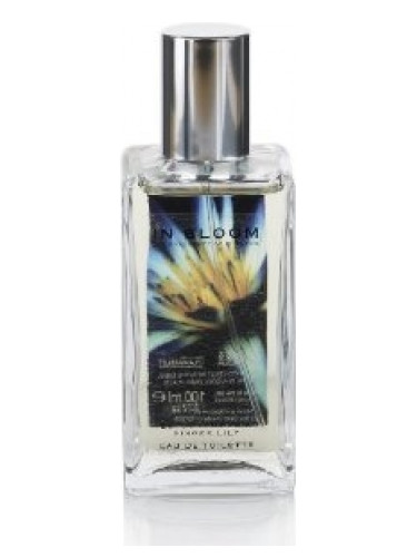 Lotus Flower And Ginger Lily Marks And Spencer Perfume A Fragrance