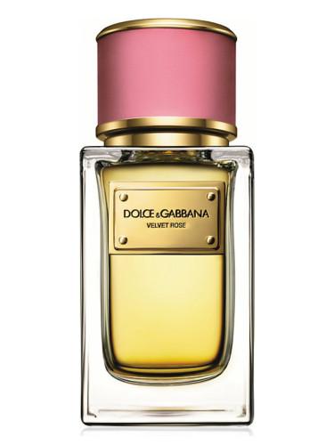 dolce gabbana perfume rose