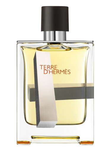 Men D'hermes Hermès Perspective For Terre mv80wNn