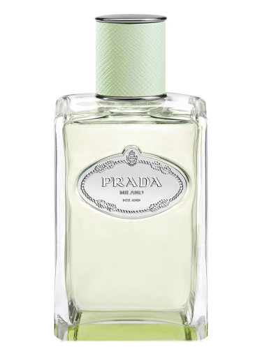 Infusion d Iris (2015) Prada perfume - a fragrance for women 2015 6d5cc6aab6a