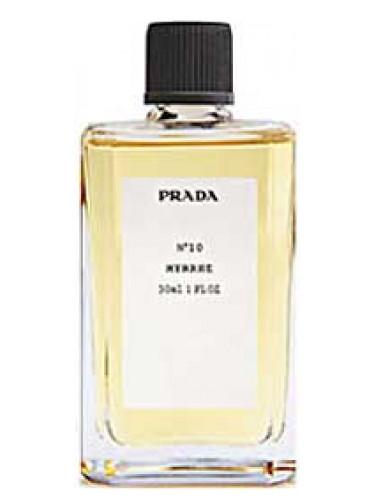 Homme No10 Prada Et Un Parfum Pour Myrrhe Femme 2008 dxBCoer