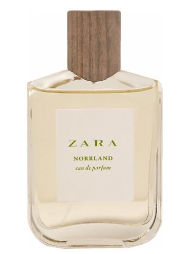 Pour Homme Zara Norrland Un Parfum Nouveau Cologne 2017 OkPw0X8n