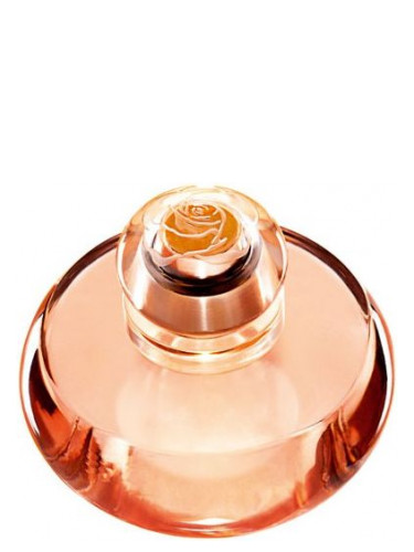 Volare Oriflame Perfume A Fragrance For Women 2010