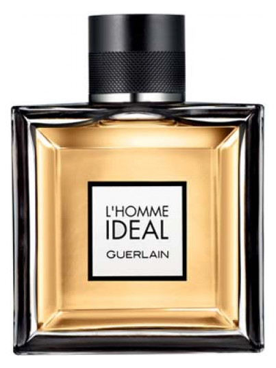 guerlain homme perfume review