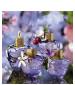 perfume Caprice Amarena