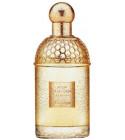 perfume Aqua Allegoria Lys Soleia