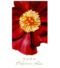 perfume Bulgarian Rose