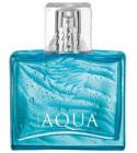 perfume Aqua for Him