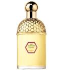 perfume Aqua Allegoria Figue - Iris