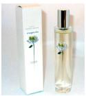 perfume Magnolia