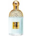 perfume Aqua Allegoria Teazzurra