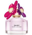 perfume Daisy Sorbet