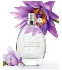 perfume Scent Essence - Blooming Lotus