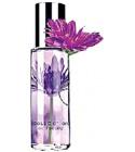 perfume Passionate Purple