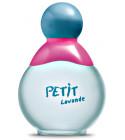 perfume Petit Lavande
