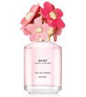 perfume Daisy Eau So Fresh Blush