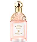 perfume Aqua Allegoria Pera Granita