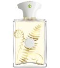 perfume Bracken Man