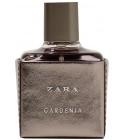 perfume Zara Gardenia 2017