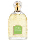 perfume Guerlain Chant d'Aromes