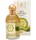 perfume Aqua Allegoria Tutti Kiwi