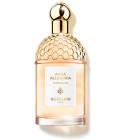 perfume Aqua Allegoria Pamplelune