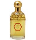 perfume Aqua Allegoria Orange Magnifica