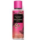 perfume Pure Seduction Noir