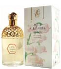perfume Aqua Allegoria Lilia Bella
