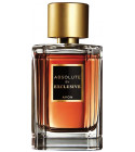 perfume Absolute by Exclusive