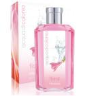 perfume Acqua di Colonia Floral