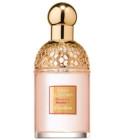 perfume Aqua Allegoria Bouquet Numero 1